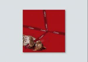 Carte de voeux pour Cartier, 2010